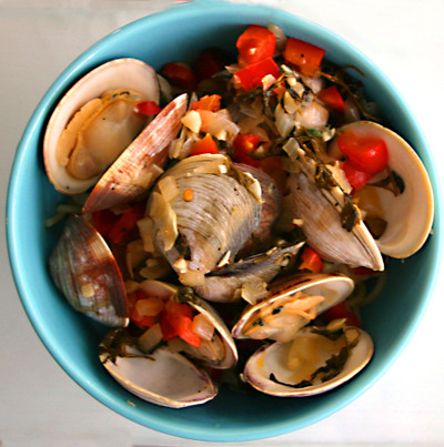 Clams_006_copy